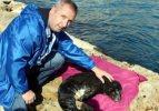 Yaralı yavru foku vatandaşlar kurtardı