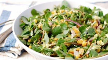 Kilo verdiren semizotu salatası