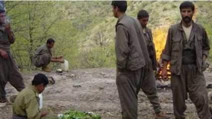 PKK şokta: Dün gece öldürüldü!
