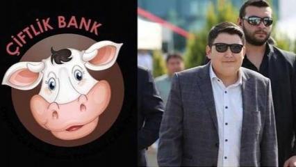Çiftlik Bank patronu Mehmet Aydın kimdir? Nereli ve gerçek yaşı kaçtır?