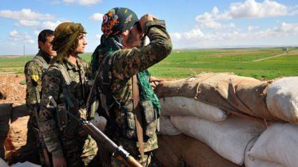 İngiliz hükümetinden PYD/YPG itirafı