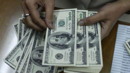 Hükümetten peş peşe dolar açıklaması
