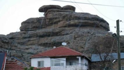 Bu köyde diken üstünde yaşıyorlar!
