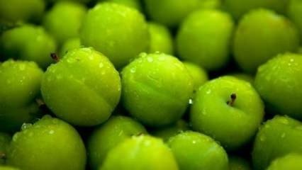 Yeşil erik yemeniz için 11 neden