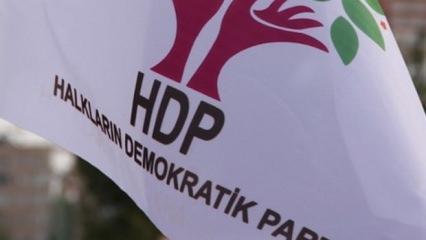 HDP Almanya'da rezil oldu