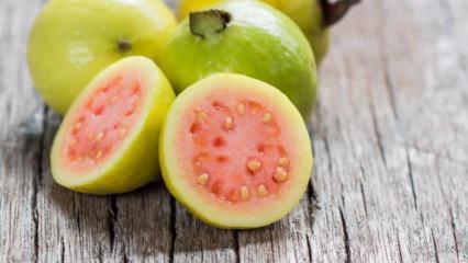 Guava meyvesi nedir? Faydaları nelerdir?