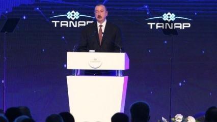 İlham Aliyev'den Erdoğan'a övgü dolu sözler