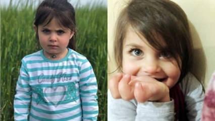 Leyla Aydemir'in katili ceza evinde! 'Kasten öldürme' suçundan hücrede!
