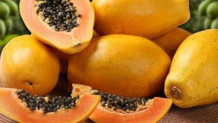 Papaya meyvesi ve çekirdeğinin faydaları