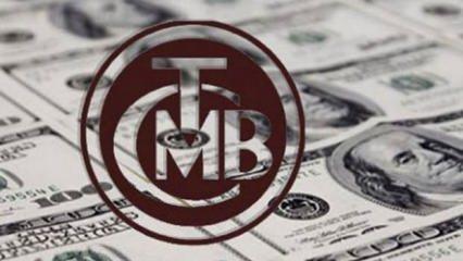 Merkez Bankası'ndan dolar açıklaması