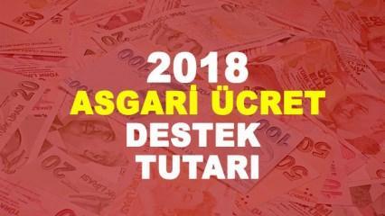 Asgari ücrete destek tutarı ne kadar? 2018 AGİ dahil asgari ücret kaç TL?