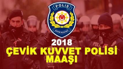 Çevik Kuvvet Polisi maaşı kaç TL? (2018)