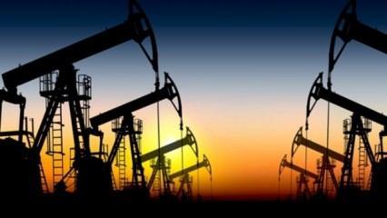 Brent petrolün varili 71,84 dolar