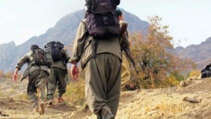 TSK açıkladı: PKK'nın kritik ismi öldürüldü