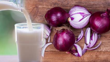 Mor soğanın faydaları nelerdir?