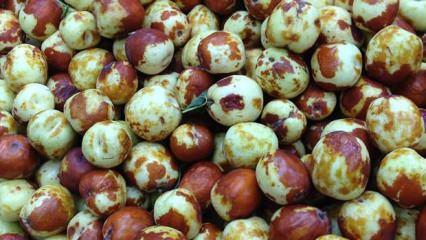 Hünnap meyvesinin faydaları nelerdir? Hangi hastalıklara iyi gelir?