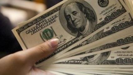 Dolar iki ayın dibini gördü!