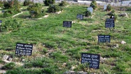 İnsanlığın utanç tabelaları!