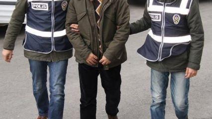Avustralya'dan gelen PKK'lı aile yakalandı