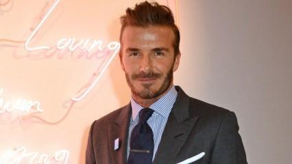 David Beckham'ın hayvan sevgisi