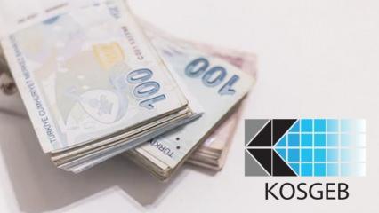 KOSGEB'ten devlet desteği alan girişimci binlerce TL kazanıyor! Yaptığı iş...