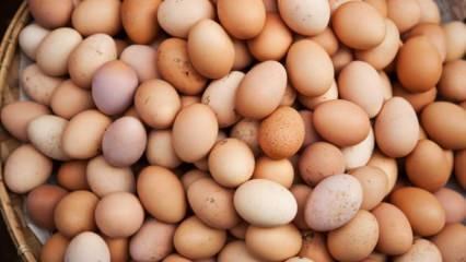 Yumurta seçerken nelere dikkat edilir?