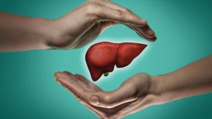 Karaciğer yağlanması nedir, neden olur? Belirtileri, tedavi yöntemleri!