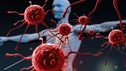Bağışıklık sisteminin zayıf olduğunu gösteren işaretler nelerdir? Bağışıklık sistemini güçlendiren besinler hangileridir?