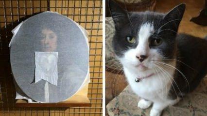 400 yıllık tabloya kedi darbesi!