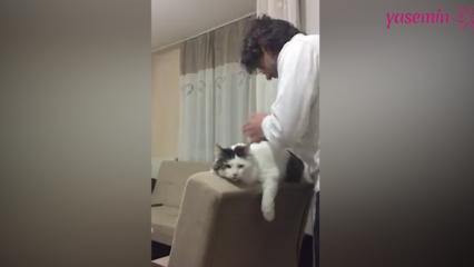 Sahibi ile konuşan kedi!