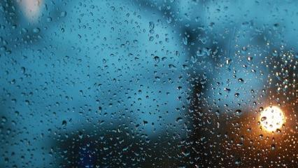 Yağmur lekelerine kesin çözüm