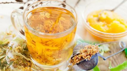 Saraçoğlu'ndan ıhlamurla etkili zayıflama yöntemi! Ihlamur çayı nasıl yapılır? Aç karna...