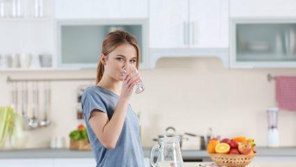 Vücudumuzun sıvı ihtiyacını gideren besinler nelerdir?