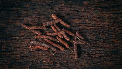 Uzun biberin (Pippali) faydaları nelerdir? Hangi hastalıklara iyi gelir?