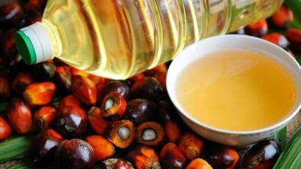 Endonezya, AB ürünlerini boykota hazırlanıyor