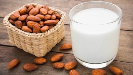 Bademin faydaları nelerdir? 4 tane çiğ badem ile beraber ballı süt içerseniz...