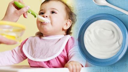 Bebeklere yoğurt nasıl yapılır? Bebekler için ev yapımı meyveli yoğurt tarifleri