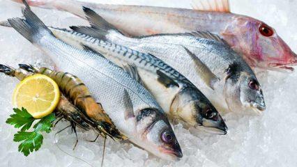 Rüyada balık görmek kötüye mi işaret? Rüyada balık görmek nasıl yorumlanır?