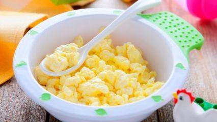 Bebek omleti nasıl yapılır? Bebekler için kolay ve pratik doyurucu omlet tarifleri