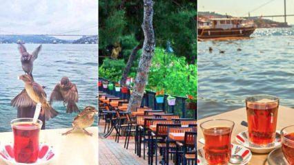 İstanbul Anadolu Yakası'ndaki aile çay bahçeleri