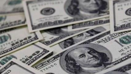 Türkiye'nin dolar hamlesinden rahatsız oldular! Hemen harekete geçtiler