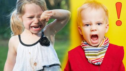 2 yaş sendromunda neler yapılmalı? Adım adım 2 yaş sendromu çözümü...