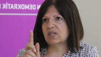 HDP'li Fatma Kurtulan kimdir? Aslen nereli ve kaç yaşındadır? Biyografisi...