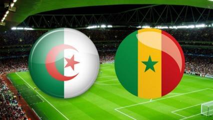 Senegal - Cezayir maçı saat kaçta ve hangi kanalda? Afrika Ulusular..