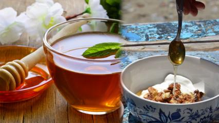 Balın faydaları nelerdir? Ceviz ve bal karışımı ne işe yarar? Çayı balla içerseniz...