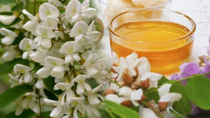 Akasyanın faydaları nelerdir? Akasya çayı ne işe yarar ve nasıl yapılır?