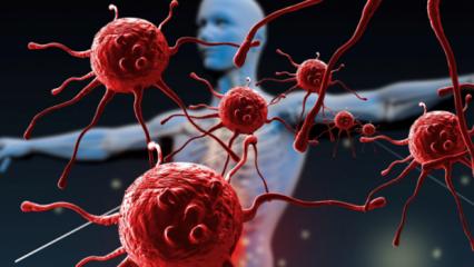 Zor iyileşen hastalıklar bağışıklık yetmezliğini tetikliyor!