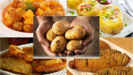 Patatesle yapılan en lezzetli 5 tarif