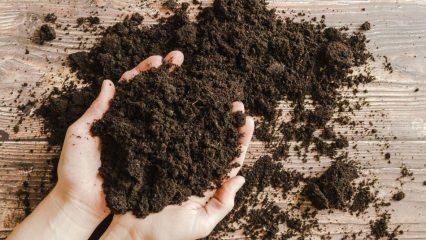 Saksı toprağı nasıl olmalı? Vitaminli toprak harcı nasıl hazırlanır?