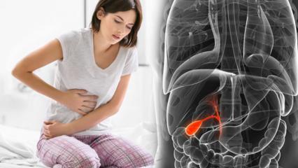 Safra kesesi kanseri nedir? Belirtileri nelerdir ve tedavisi var mıdır?